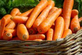 Basket of bright orange carrots