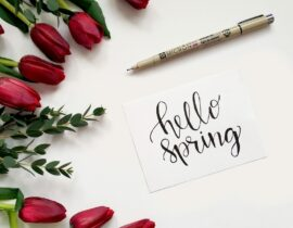 Introduction to the spring allergy season